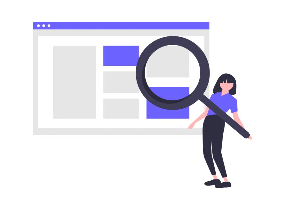 Undraw Web Search Eetr
